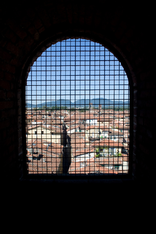 View-outside-window-from-Palazzo-Guinigi-in-Lucca-Italy
