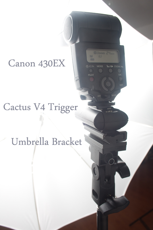 Canon 430EX on lightstand with cactus trigger and umbrella bracket