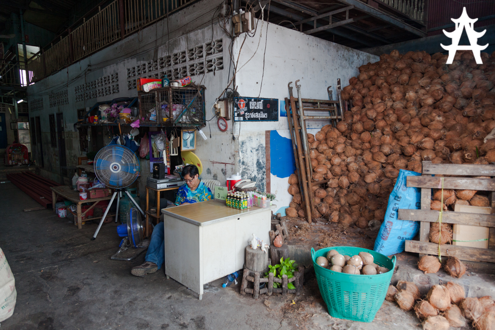 Coconuts and toilets in Ayutthaya