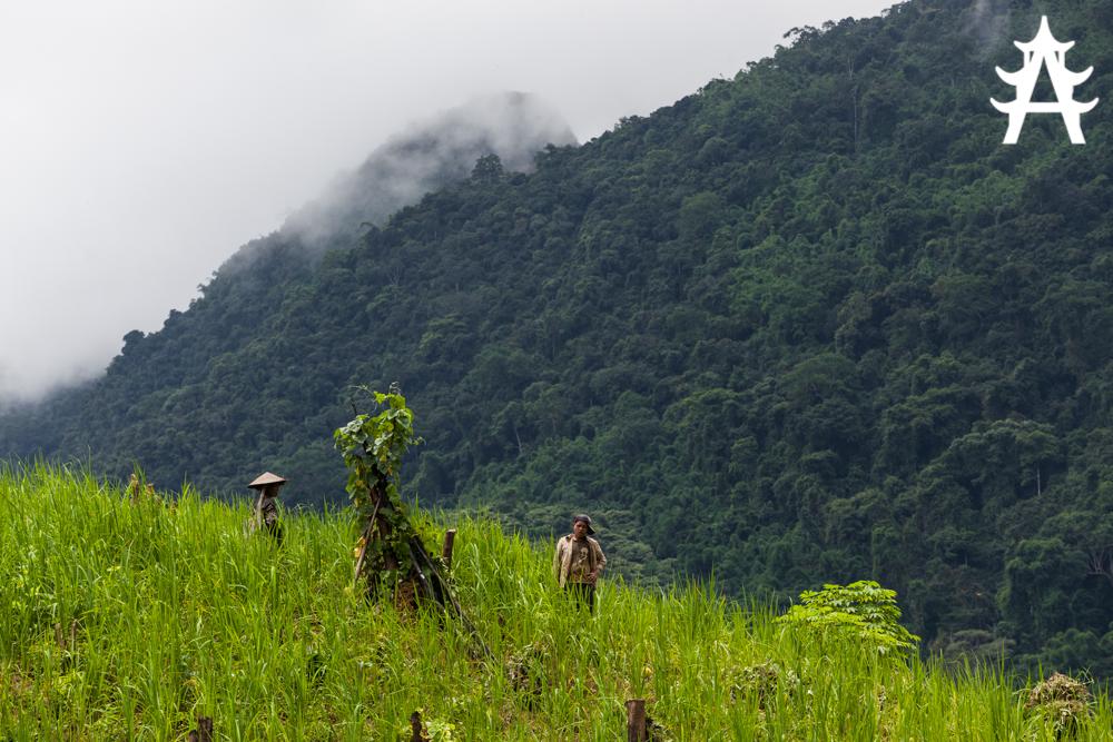 Exploring Muang Ngoi