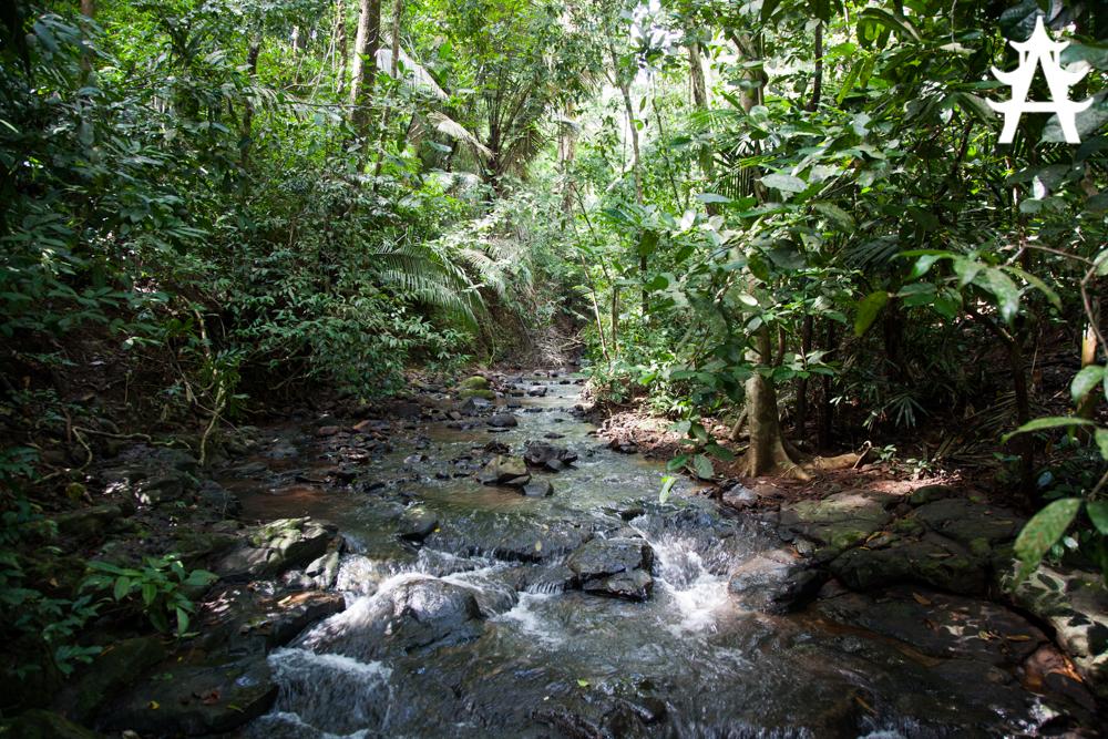Three days of trekking around Sen Monorom